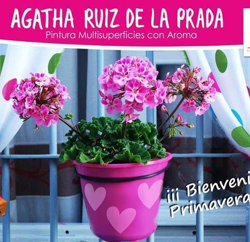 Agatha_maceta
