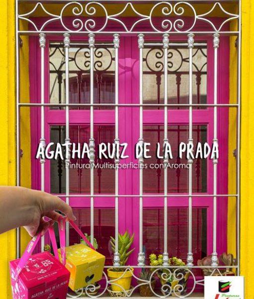 Agatha_ventana