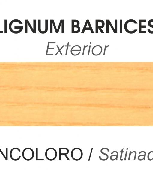 EXTERIOR SATINADO